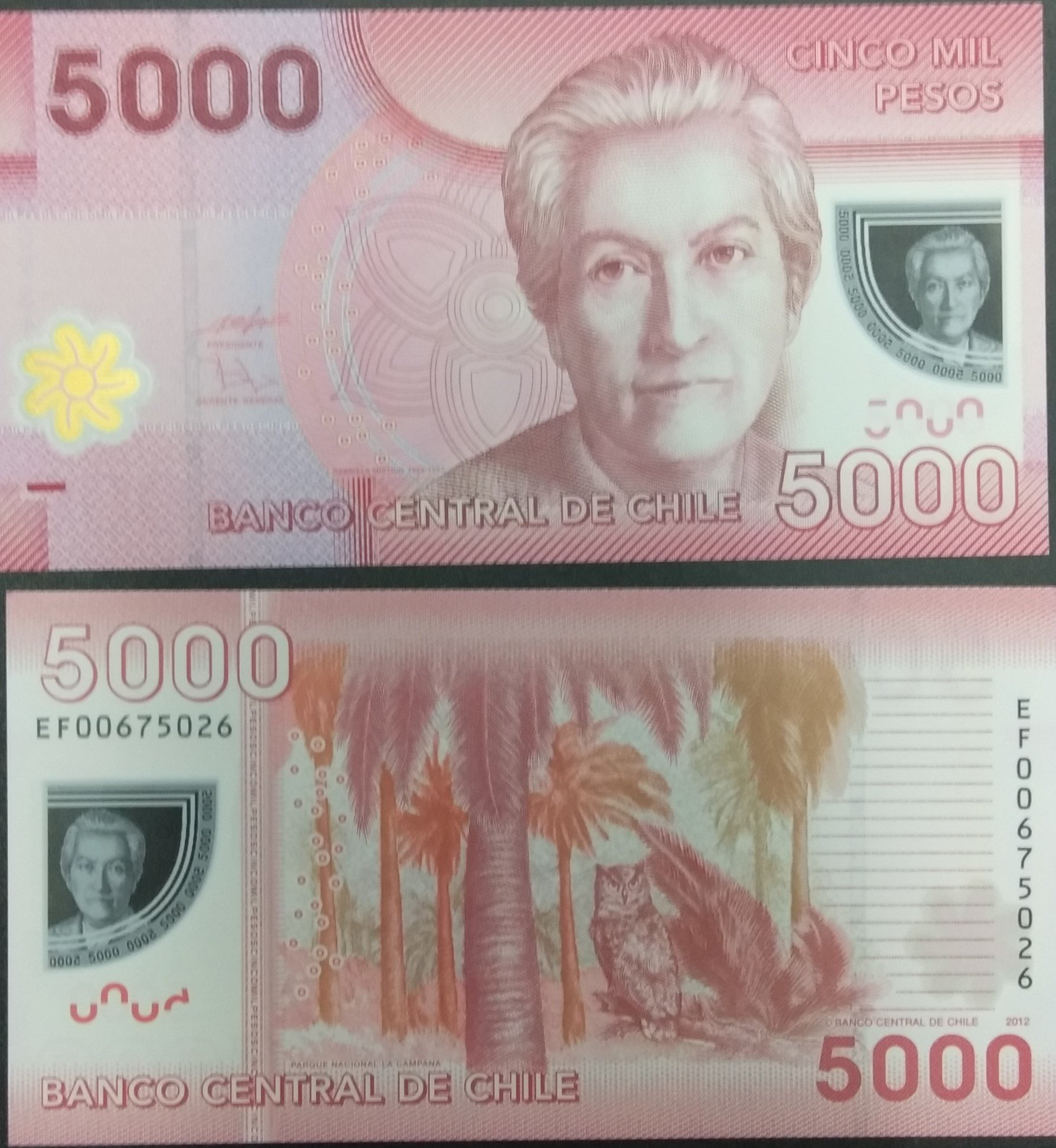 Chile 5000 pesos polymer banknote for sale