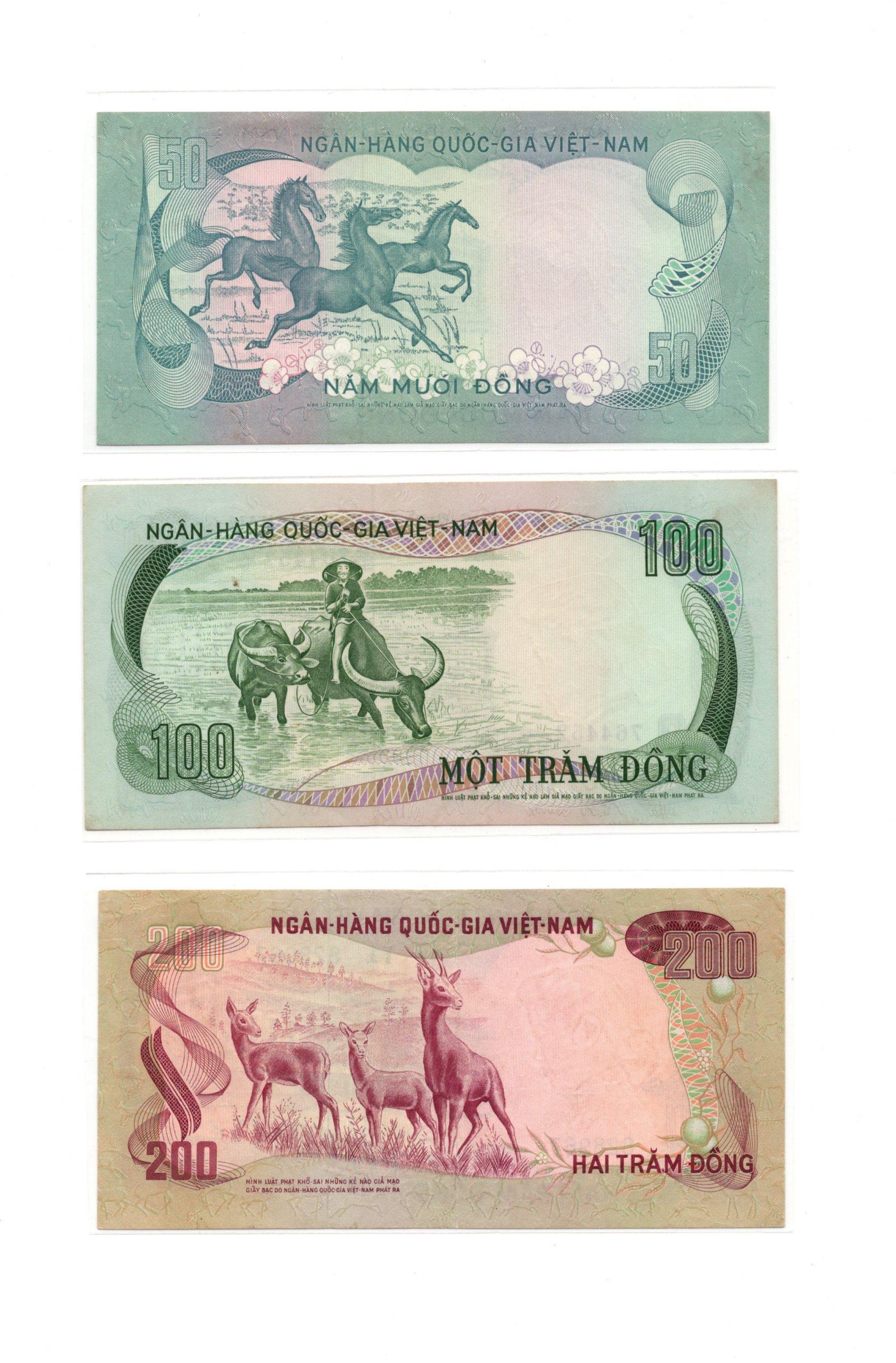 south vietnam set
