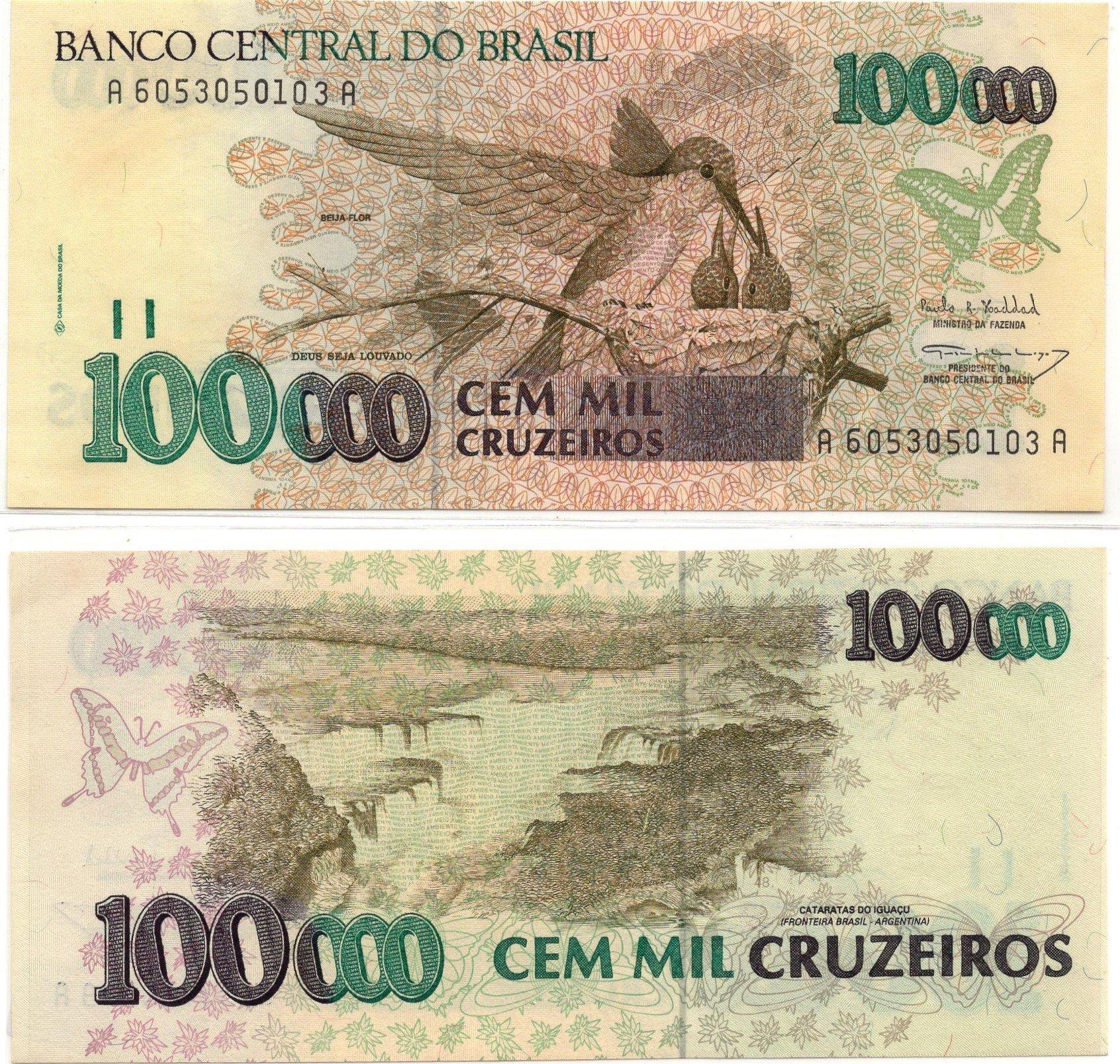 brazil 100000 cruziero huming bird
