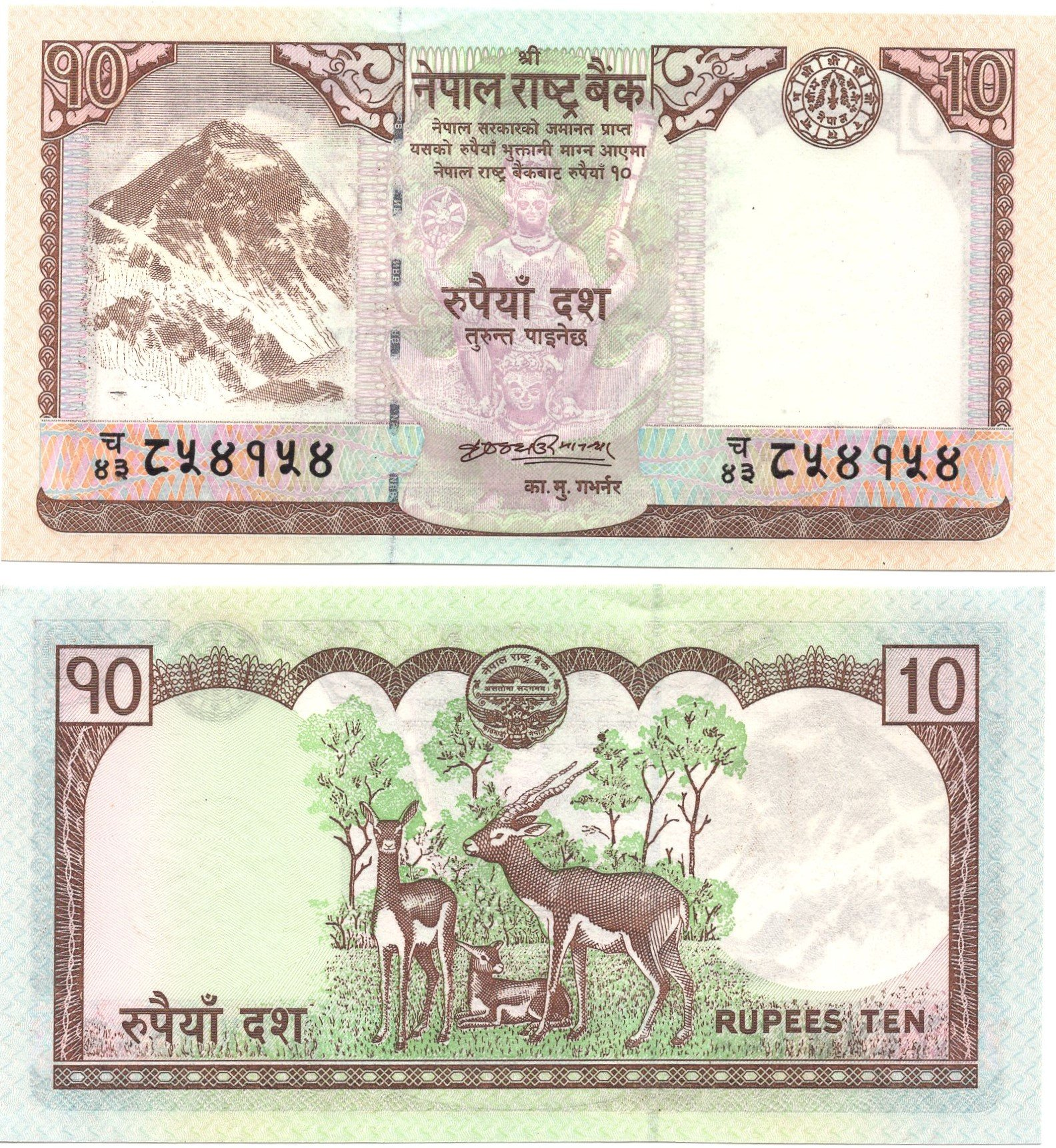 Nepal 10 rupees 2012 banknote for sale
