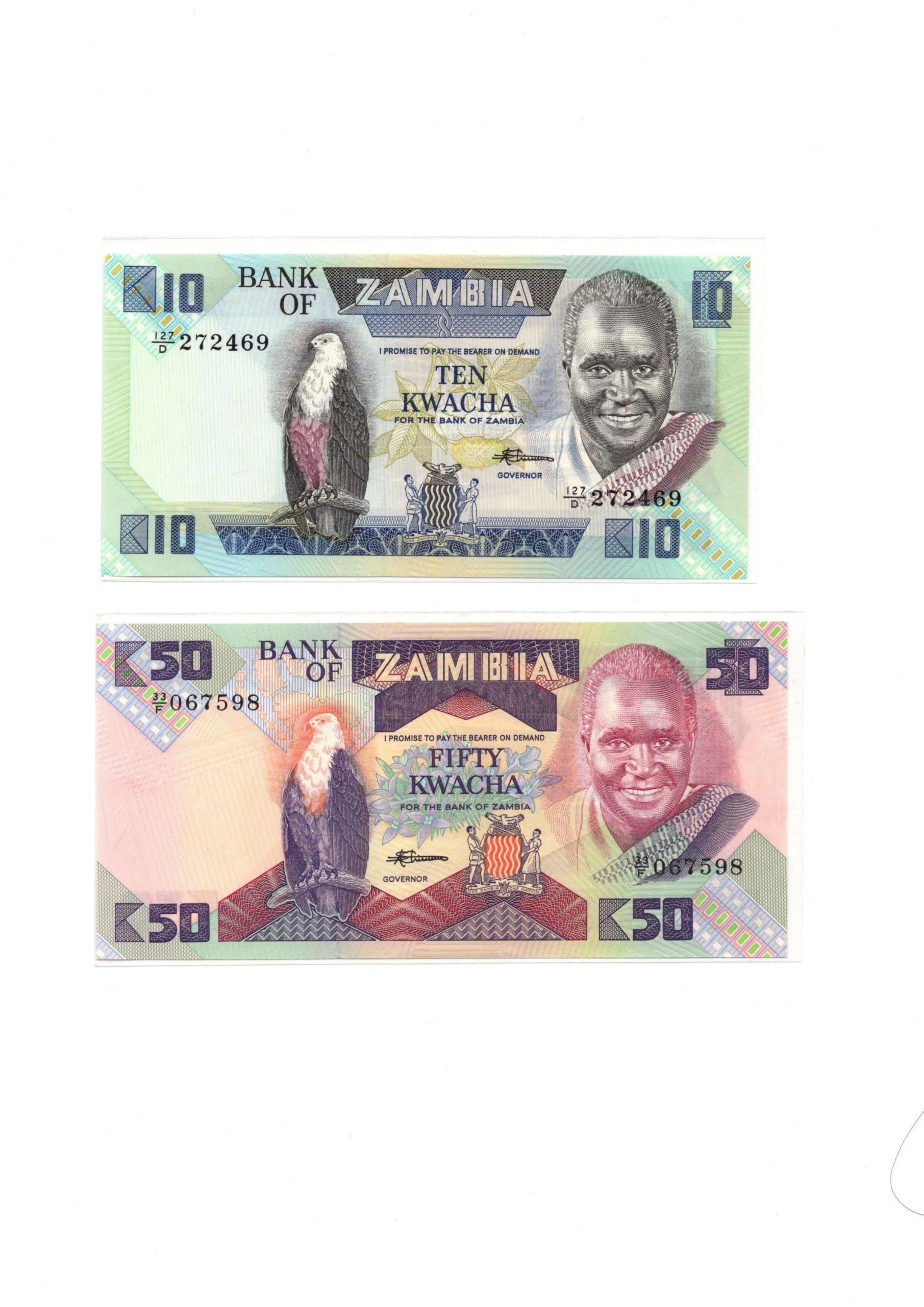 zambia man and falcon set 2